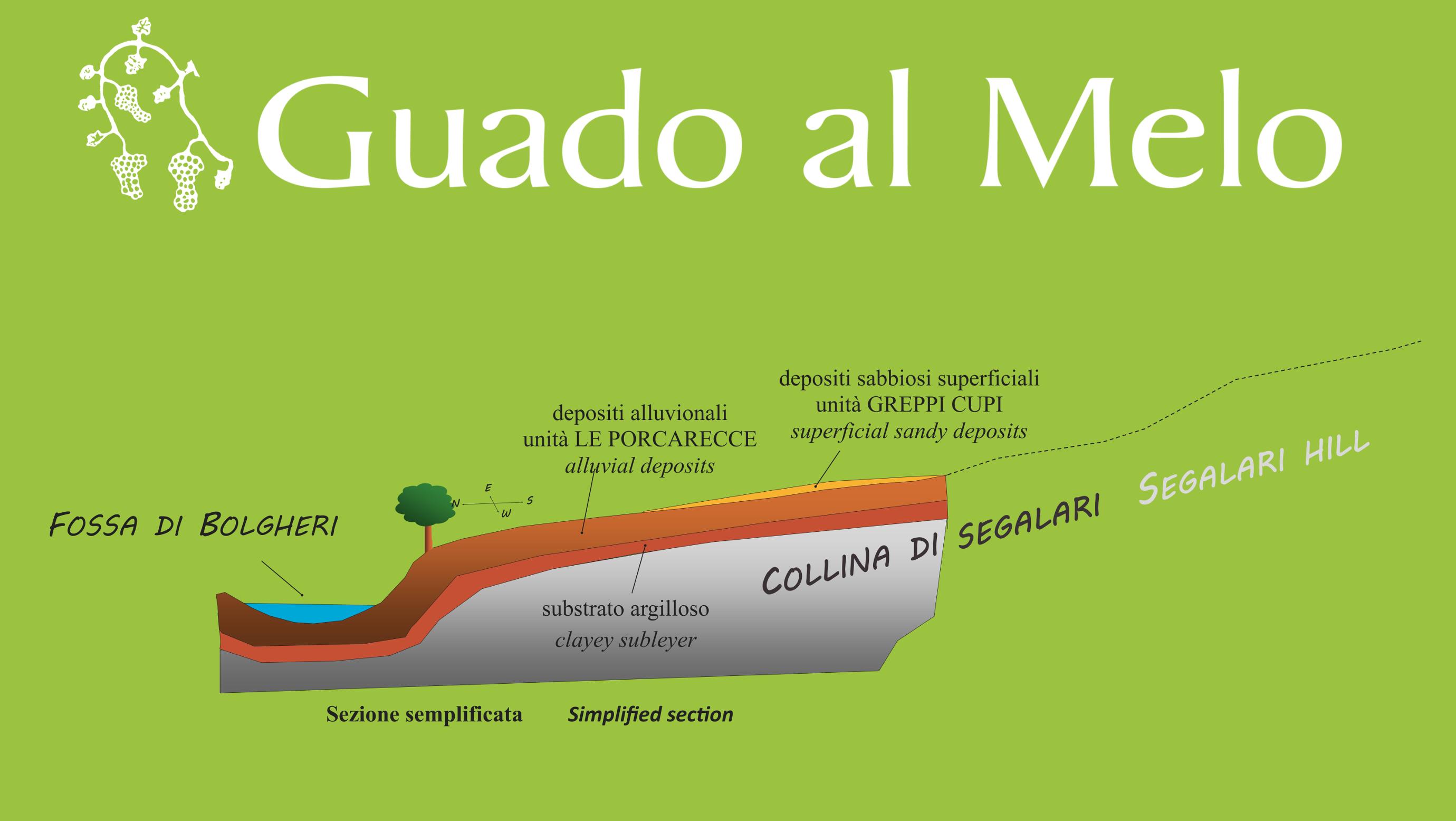 Zonazione Guado al Melo profilo