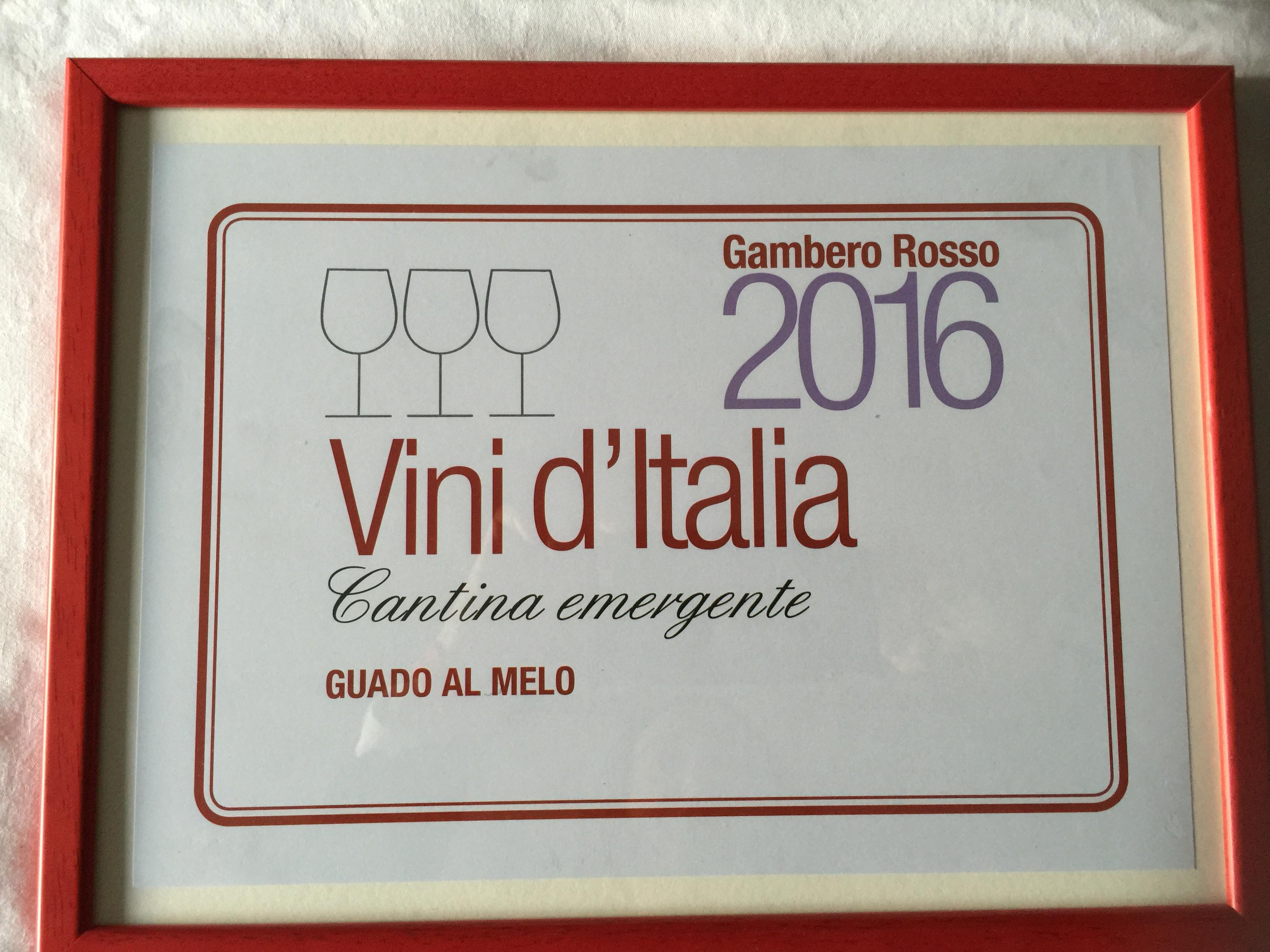 Premio Speciale 2016 Cantina Emergente (2)