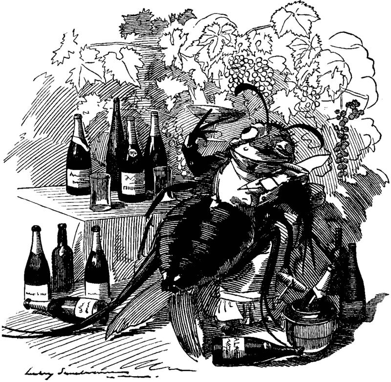 La fillossera si beve i migliori vini europei, vignetta comparsa sul settimanale inglese Punch il 6 settembre 1890.