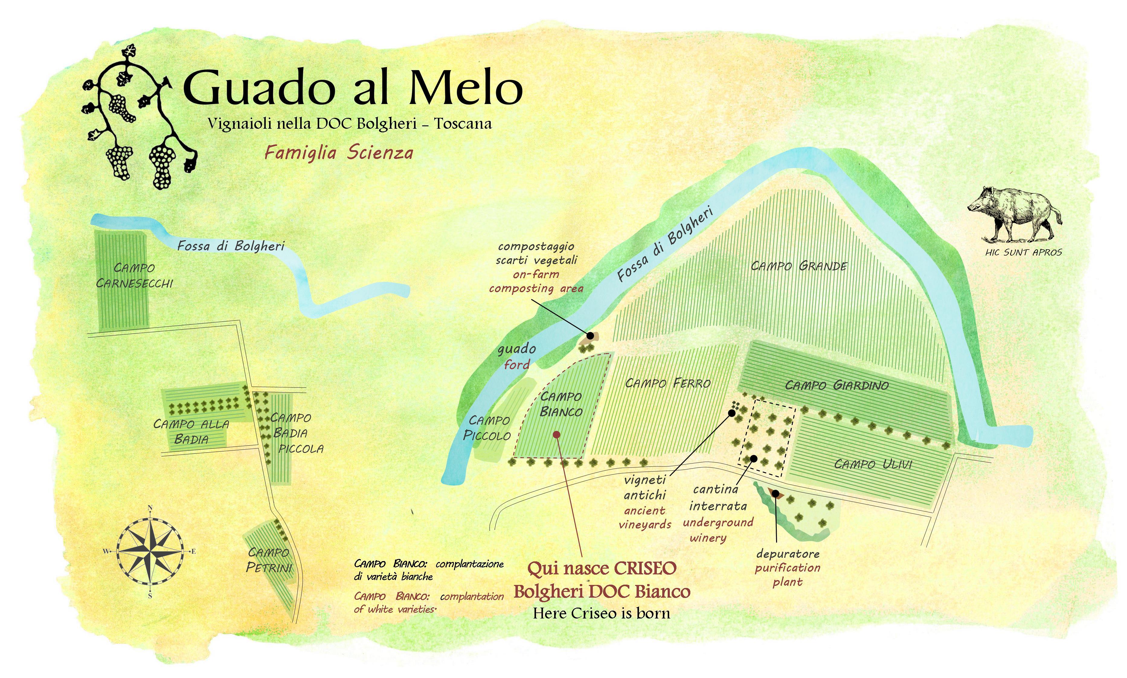 mappa vigne Criseo