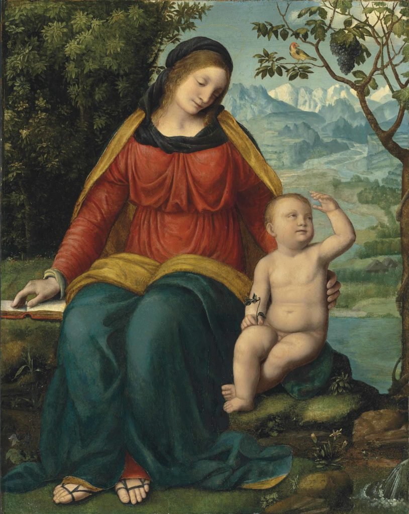 2016_CKS_11973_0033_000(bernardino_luini_madonna_of_the_grapevine)