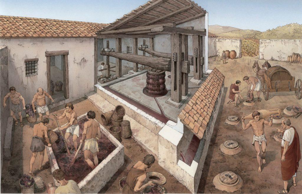 vinificazione romana
