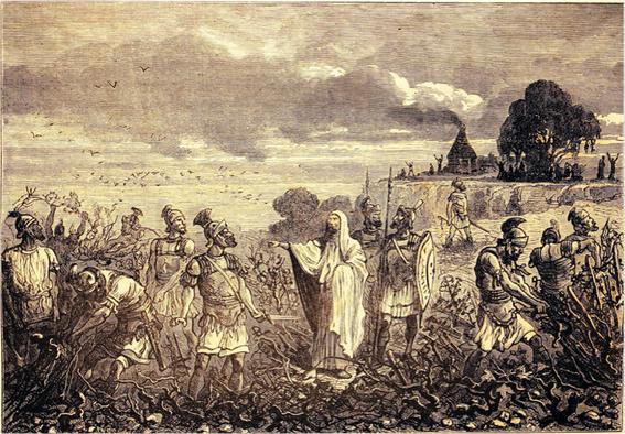 Louis-Figuier-Vignes-des-Gaules-arrachees-sur-ordre-de-l-e
