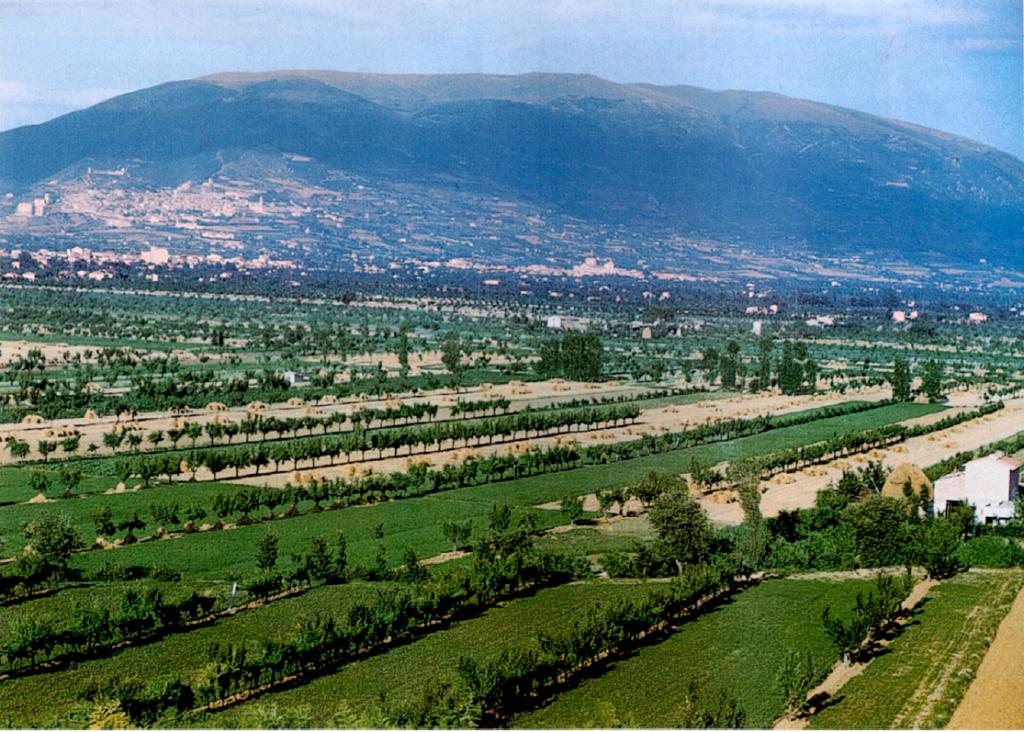campagna umbra 1958