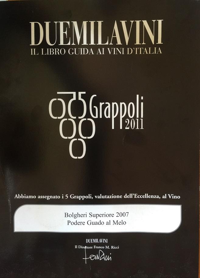 5 grappoli Duemilavini 2011b