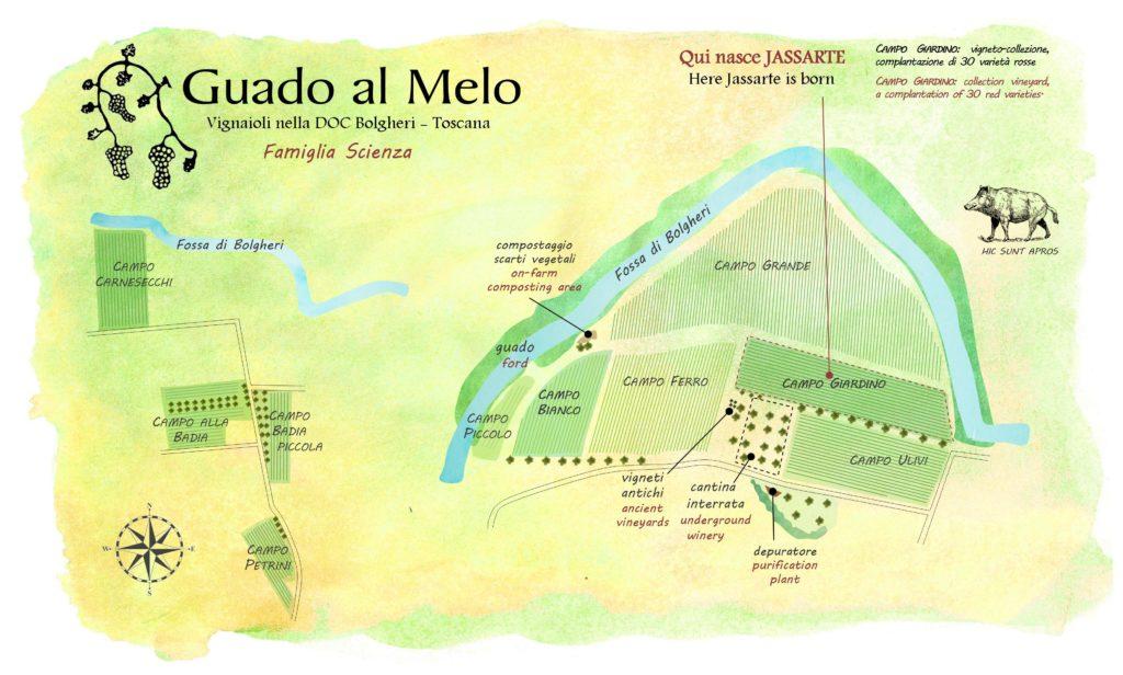 mappa vigne Jassarte