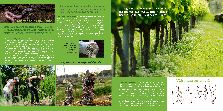 brochure pag. 12-13