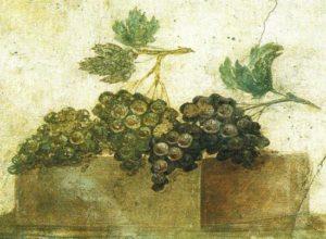 Secondo Plinio (nella sua opera Naturalis Historia) era d'uso porre nelle vigne un grappolo finto
