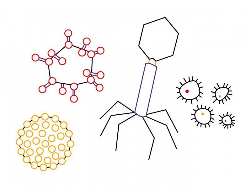 virus_cookery_illustration