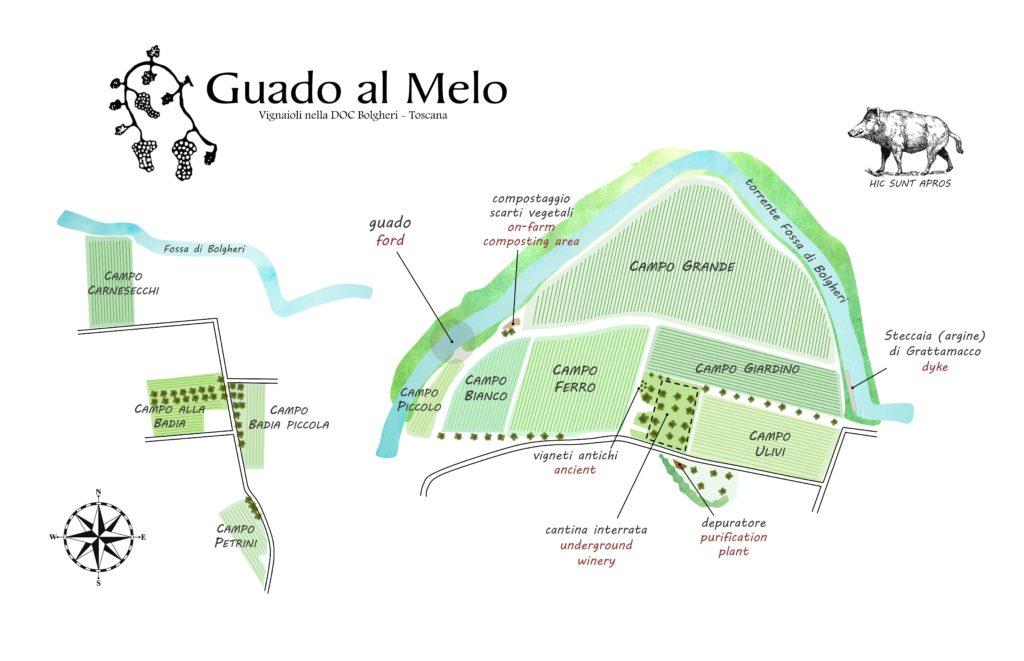 mappa vigne generale