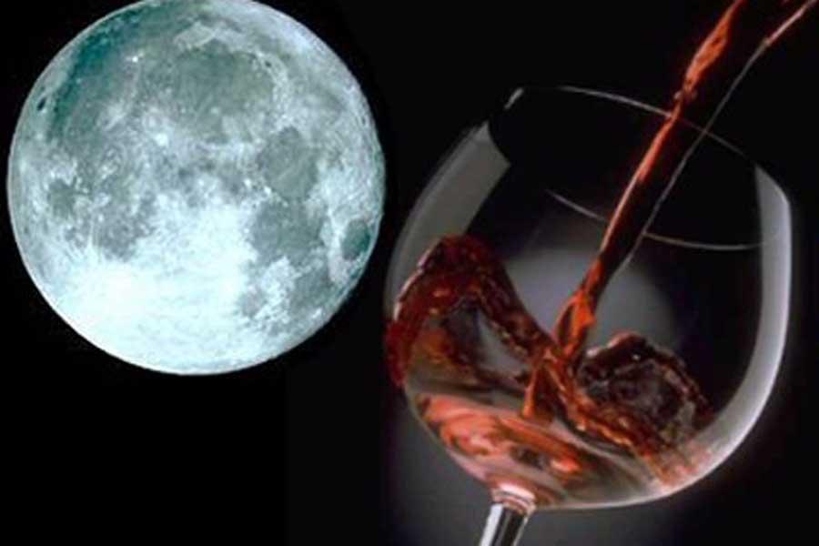 Luna Vino-20160521-111300