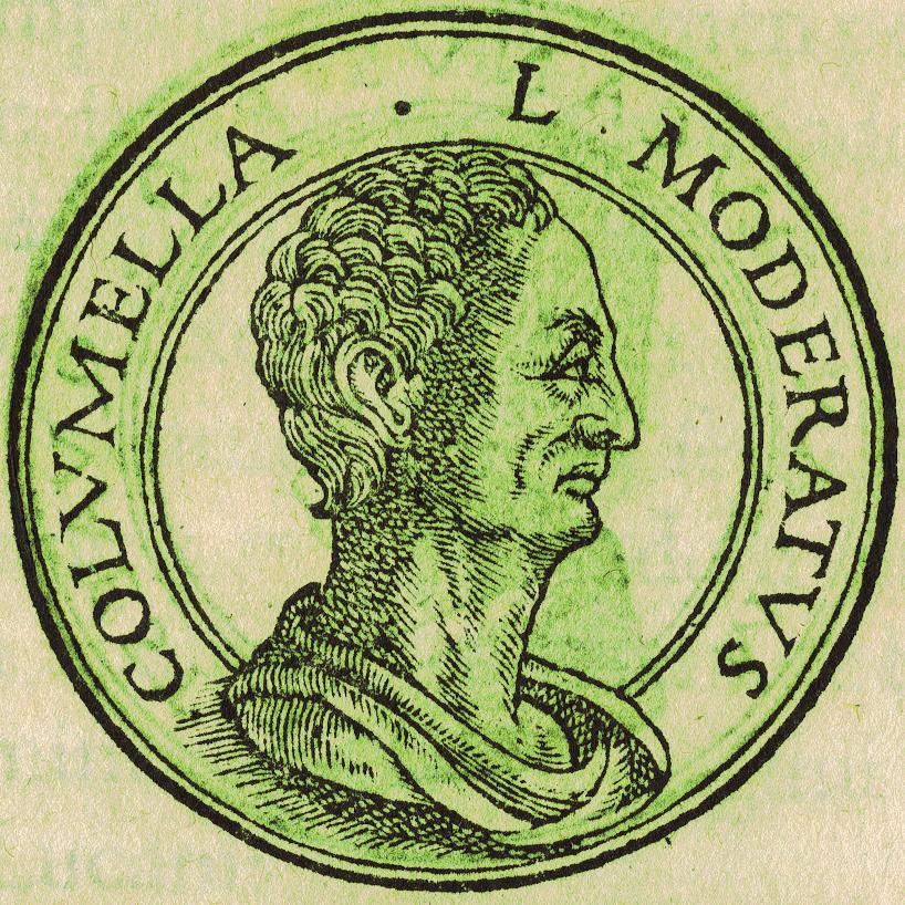 Lucius_Junius_Moderatus_Columella