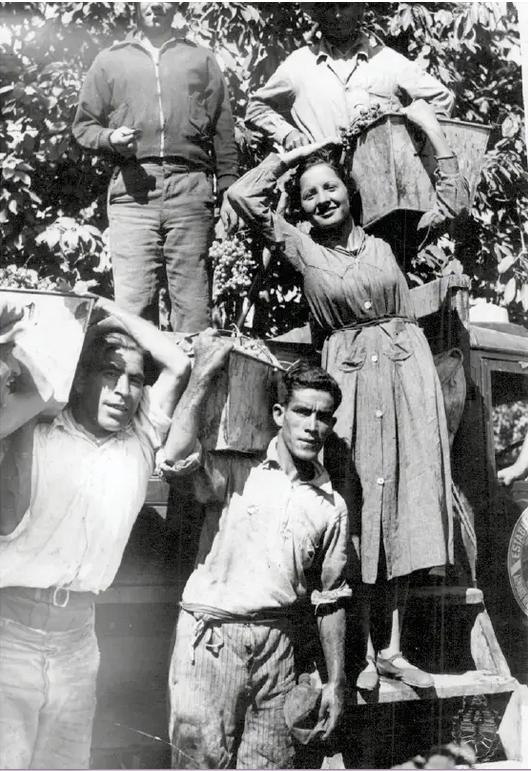 immigranti italiani in argentina