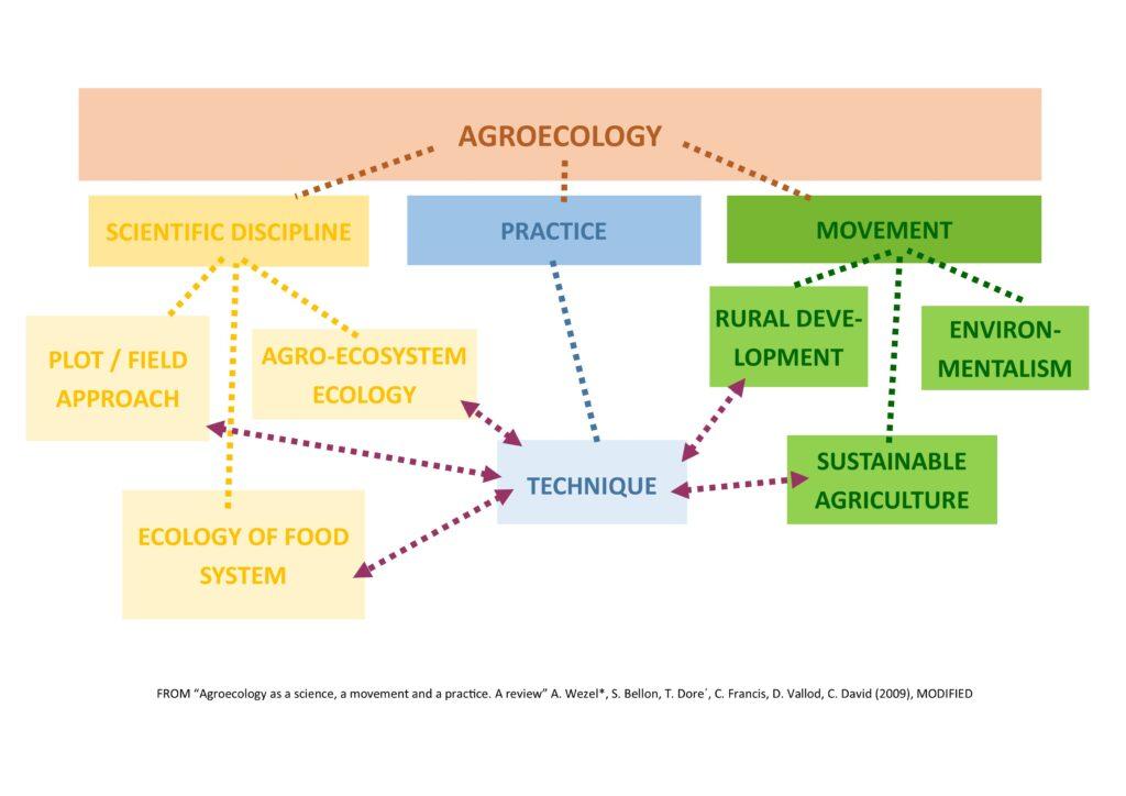 agroecologiaEN