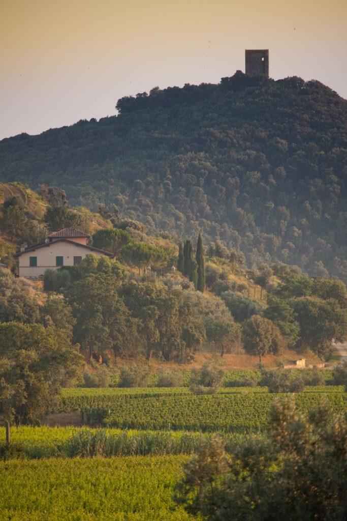 donoratico-castagneto-carducci-livorno-tuscany-royalty-free-image-614421444-1563800317